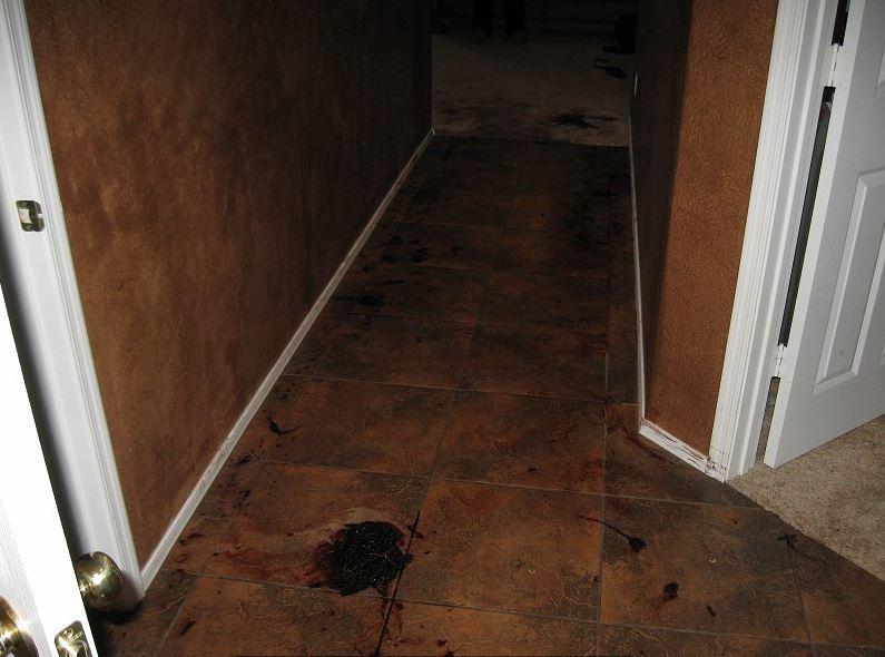 18-blood bathroom